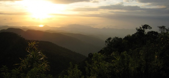 4 Days 3 Nights Mount Mbeliling Sunrice Trekking & Rinca Tours