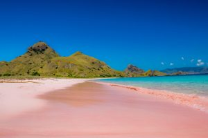 pink-beach-indonesia